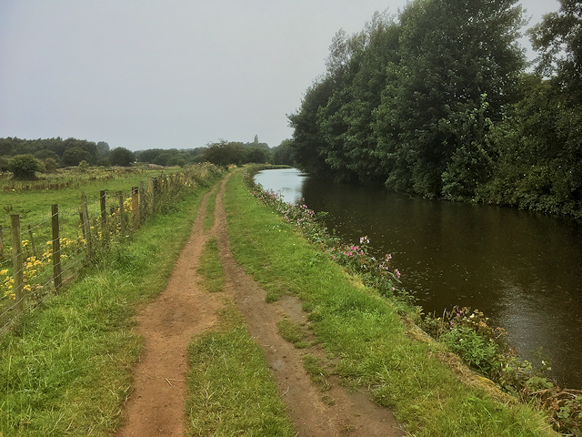 Leeds and Liverpool Canal at Standish Lower Ground