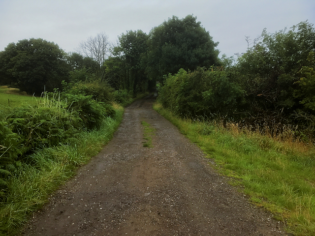 Track towards Brockhurst Farm