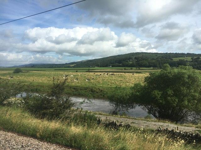 The River Aire at Glusburn