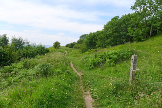 Frocester Hill Nature Reserve (National Trust)