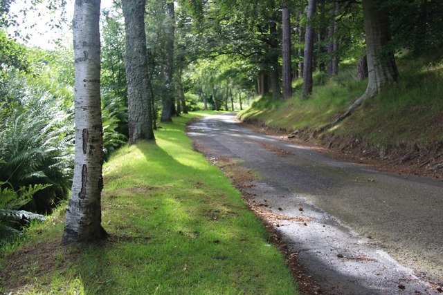 Tree-lined drive to Ardhuncart Lodge