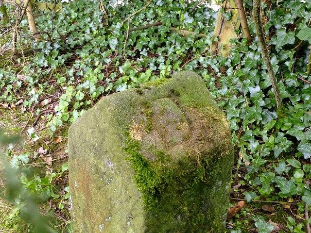 Boundary stone near Grove Farm – 2