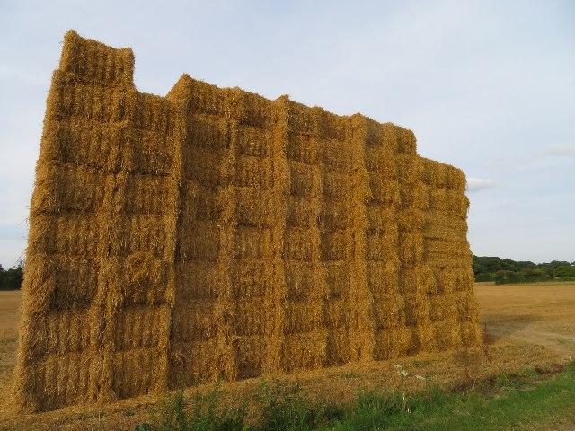Straw bales - Lower Field