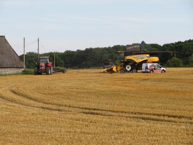 Harvest time - Saltash Field (12 acres)