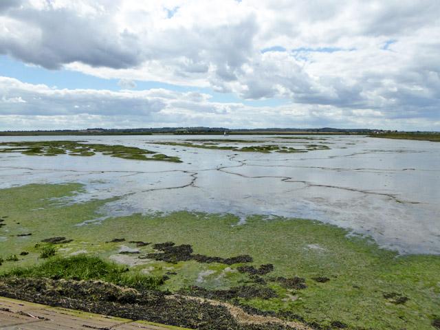Lost land, North Fambridge
