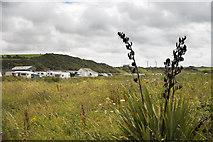 NX3343 : King's Green Caravan Park - Port William by James Johnstone