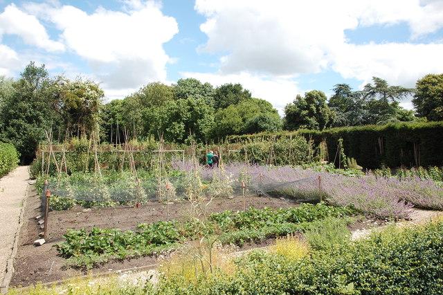 Tintinhull Garden: the vegetable plot
