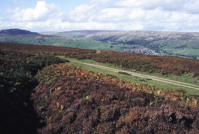 Track across Harkerside Moor