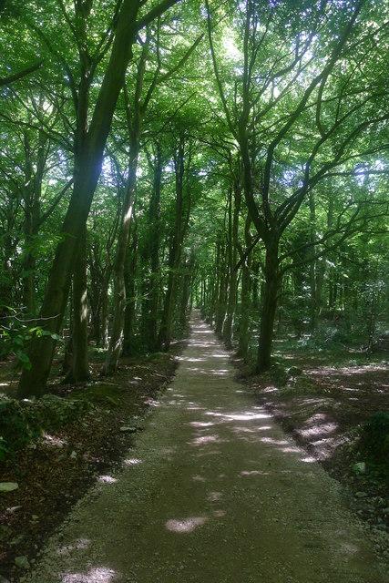 Robbers Road, Standish Wood