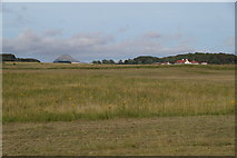 NT4681 : Fields at Aberlady Bay by Mike Pennington