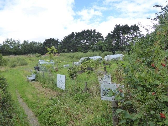 Exeter Community Garden