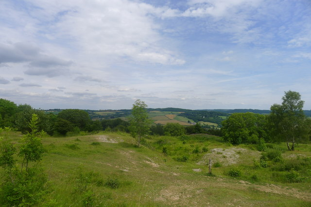 Rudge Hill National Nature Reserve