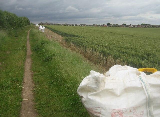 Footpath alongside Giddings Field (106 acres)