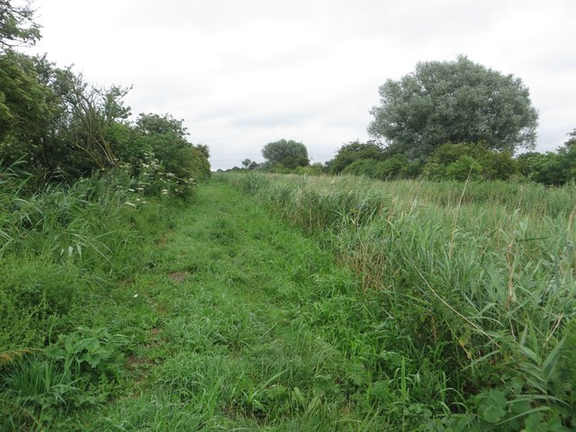 Footpath beside the disused Leven Canal