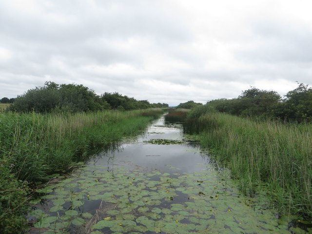 Looking west along the Leven Canal