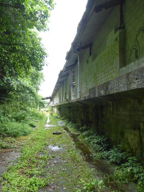 Derelict building at Wenford Dries