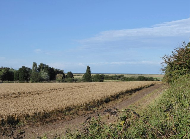 Arable land north of the main Thanet railway line