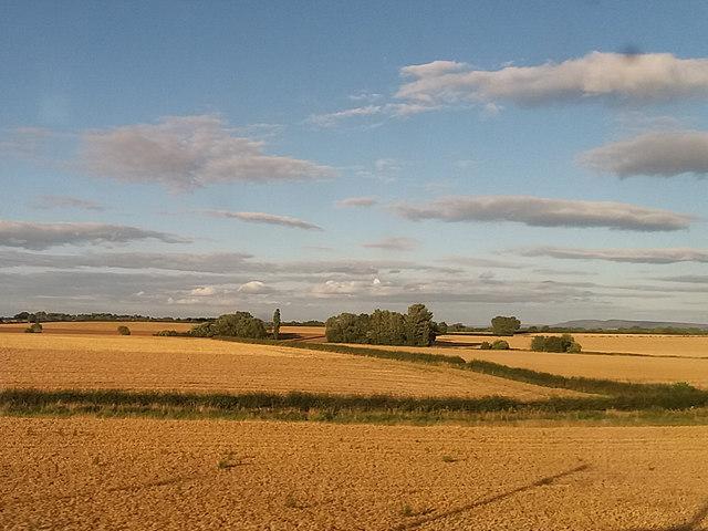 Fields around the Wiske (2)