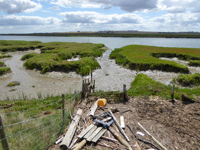 Rubbish and saltings, River Crouch