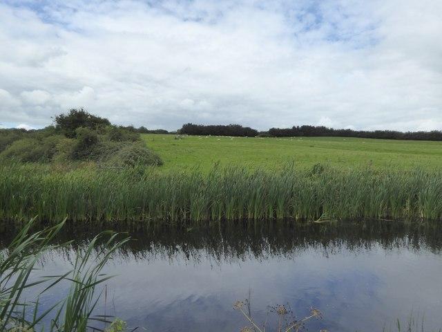 Canal west of Ayshford