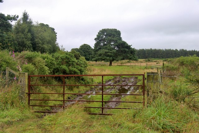 Muddy access by Beechfield Cottage