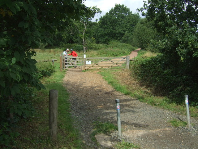 Track into Epping Forest
