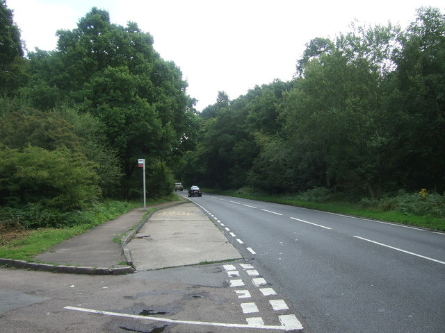 Bus stop on Epping Road (B1393)