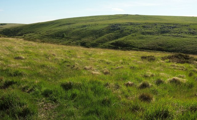East Dart valley west of Stannon Tor
