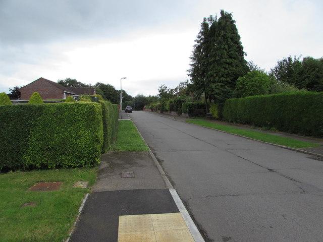 Hedge-lined Poplars Close, Mardy
