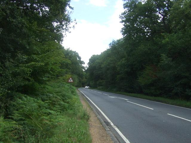 Epping Road (B1393)