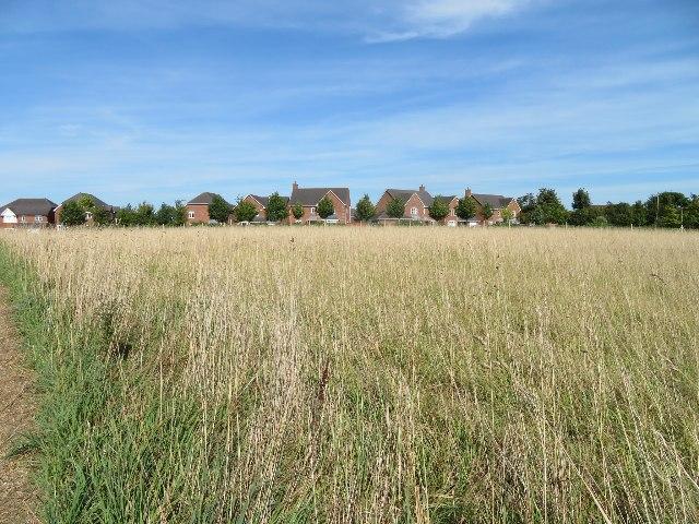 Western edge of Basingstoke