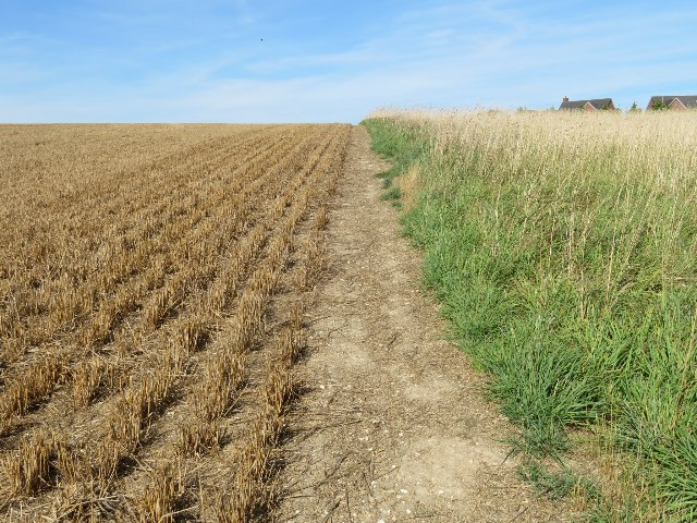 Eastern edge of Giddings Field (106 acres)