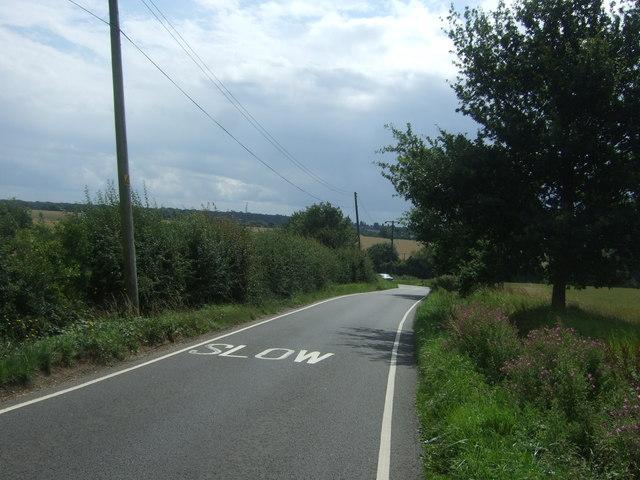 Minor road, Pinch Timber