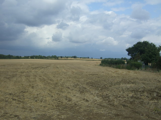 Stubble field, Thornwood Common