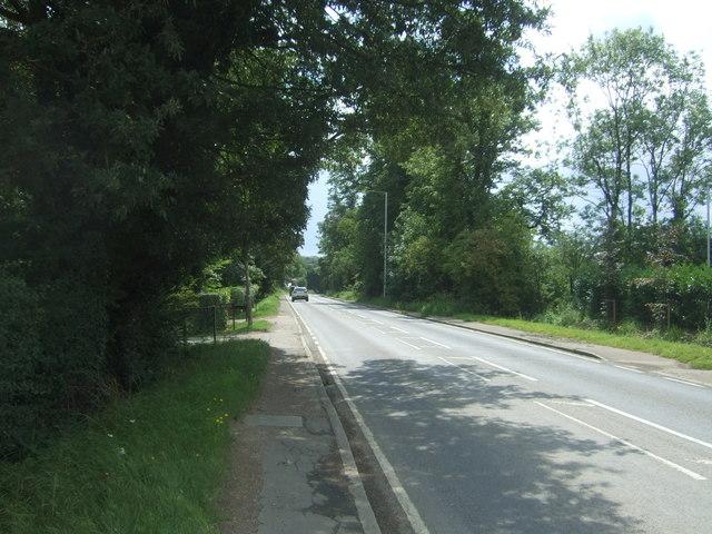 B1393, Thornwood Common