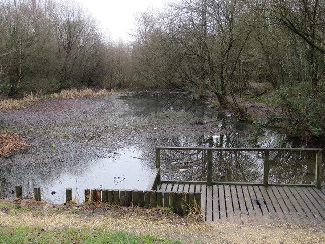 Coltsfoot Close Balancing Pond