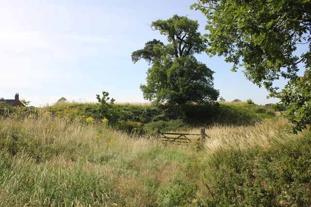 Aldford Castle (Blobb Hill) Motte