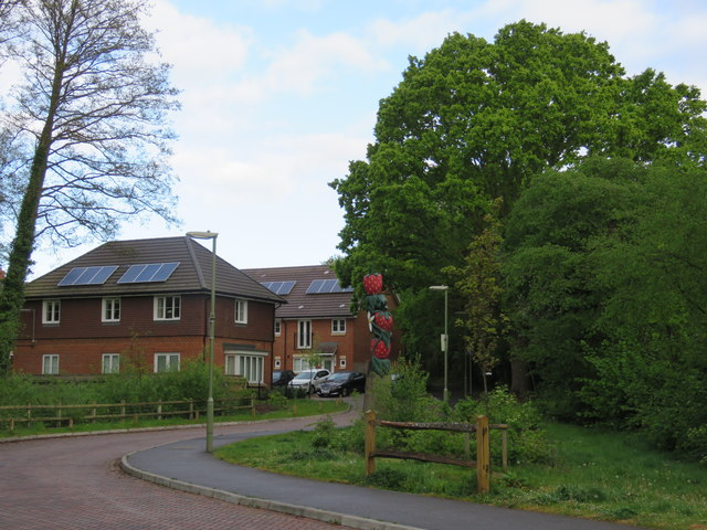 Shafford Meadows