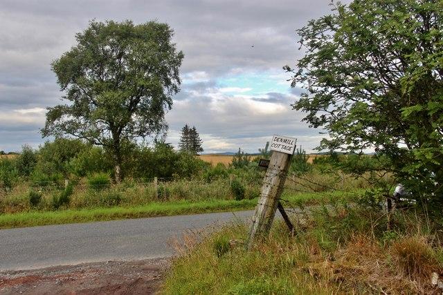 Roadside tree belt near Kinmuck