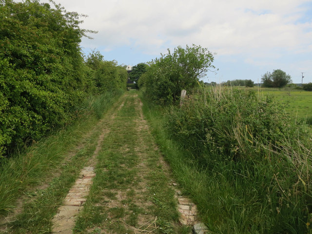 Track to Upton Mill