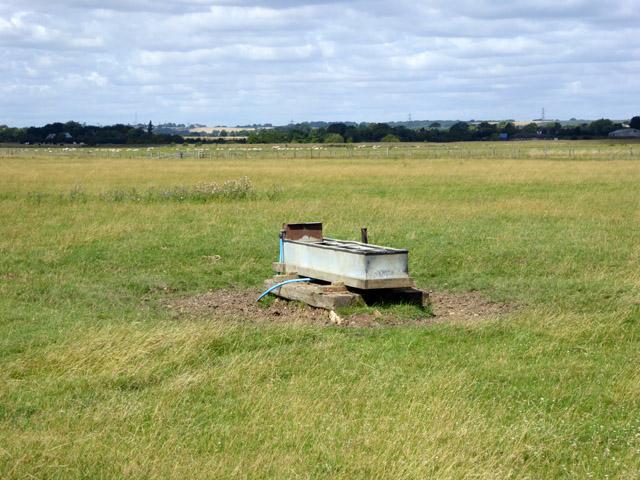 Cattle trough, Bluehouse Farm Nature Reserve