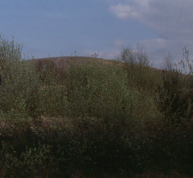 Pooley Country Park: the mound