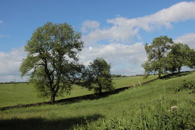 Countryside Next to Long Rake