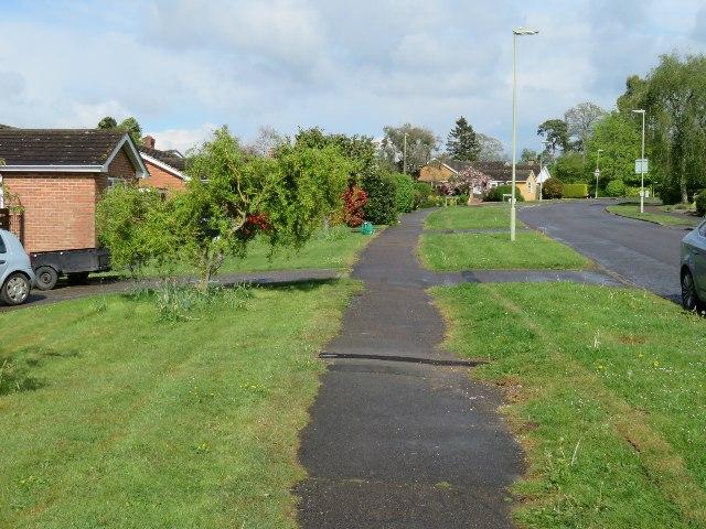 Path along The Drive