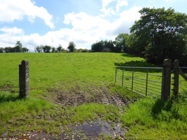 An open field, Tattyreagh Glebe