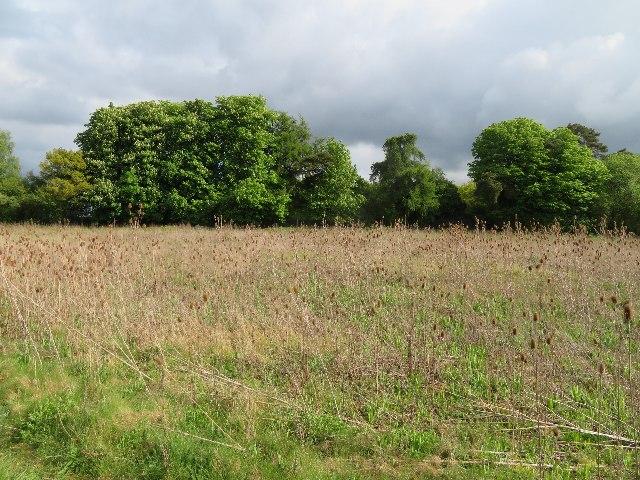 Northeast corner of St John's Field