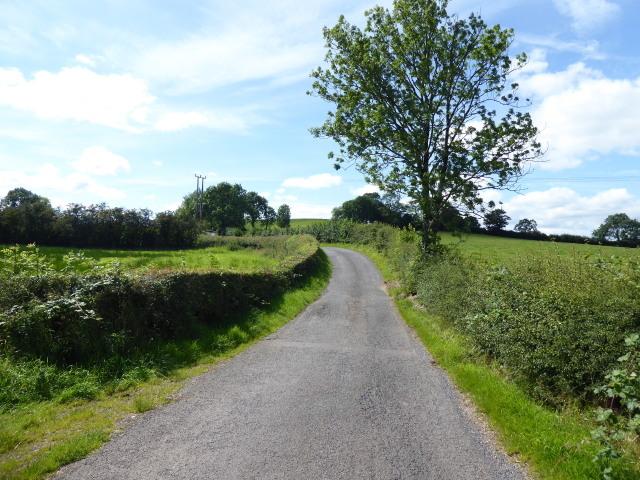 Crotty Road