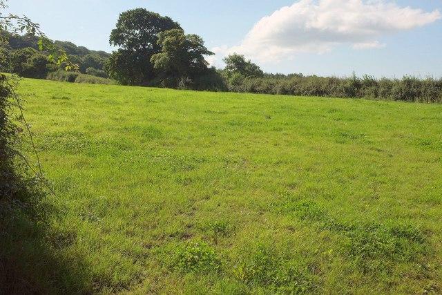 Field near Castle Brake