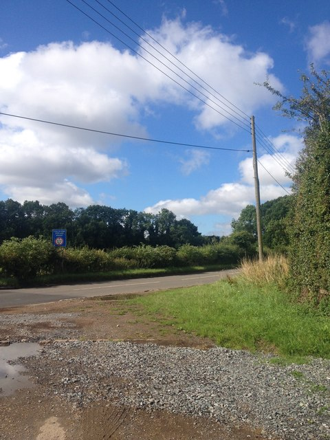 Towards Rushton