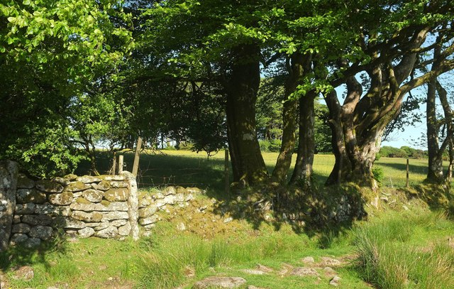 Edge of access land, Ringhill